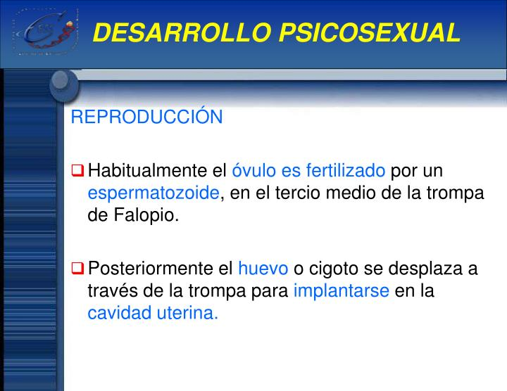 DESARROLLO PSICOSEXUAL