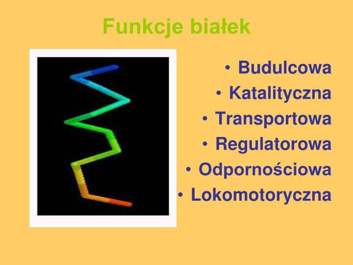 Funkcje białek