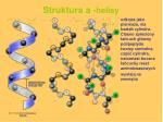 struktura a helisy
