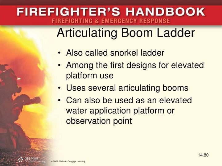 Articulating Boom Ladder