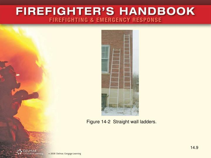 Figure 14-2  Straight wall ladders.