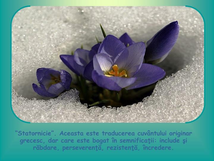 """""""Statornicie"""". Aceasta este traducerea cuvântului originar grecesc, dar care este bogat în semnificaţii: include şi răbdare, perseverenţă, rezistenţă, încredere."""