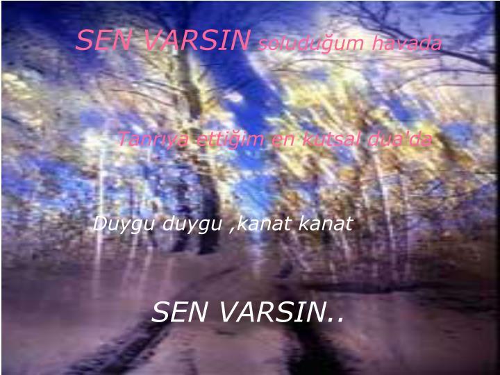 SEN VARSIN