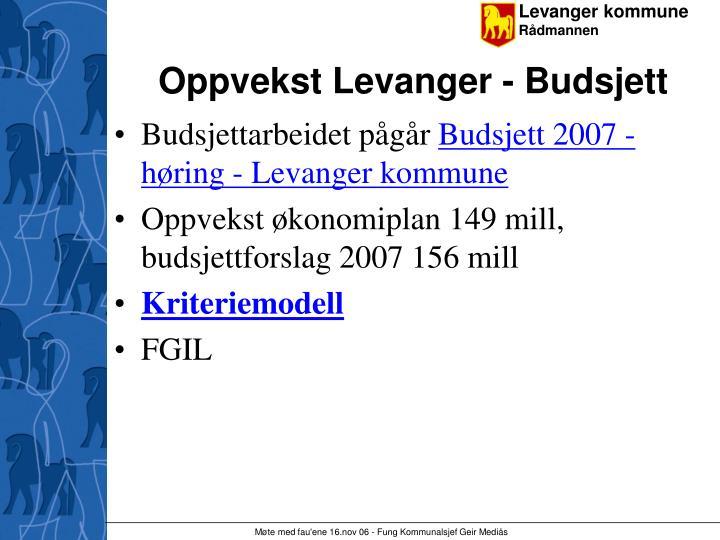 Oppvekst Levanger - Budsjett