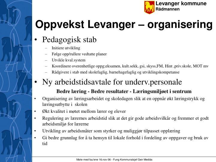 Oppvekst Levanger – organisering