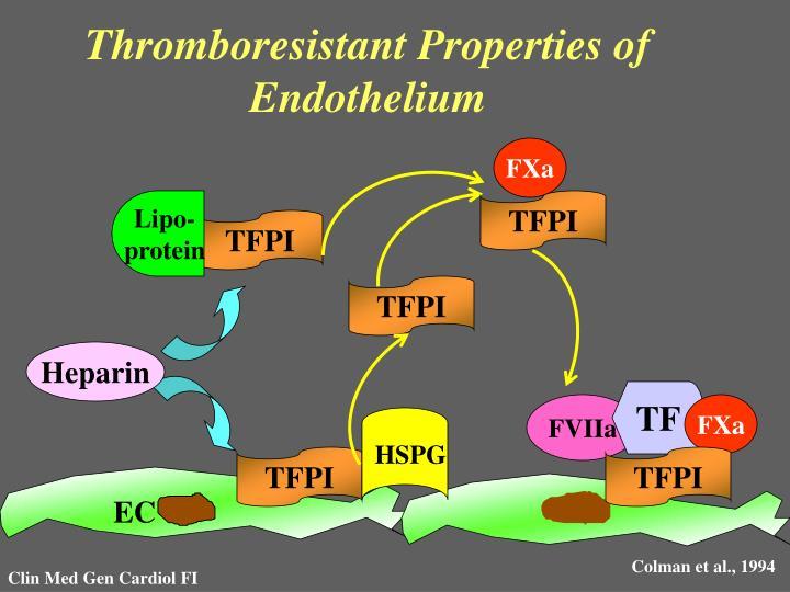 Thromboresistant Properties of Endothelium