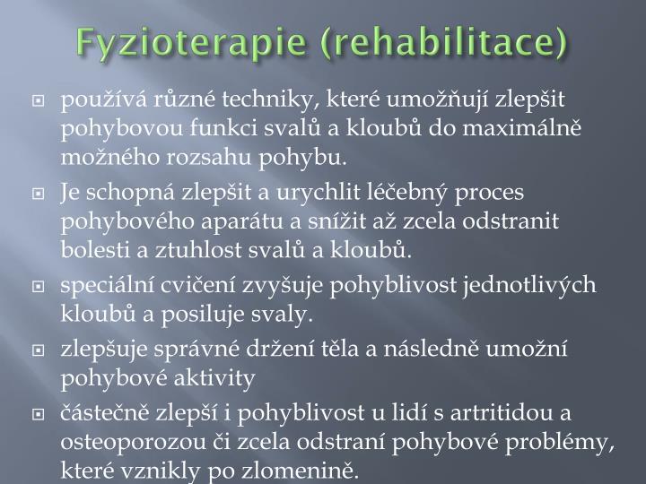 Fyzioterapie (rehabilitace)