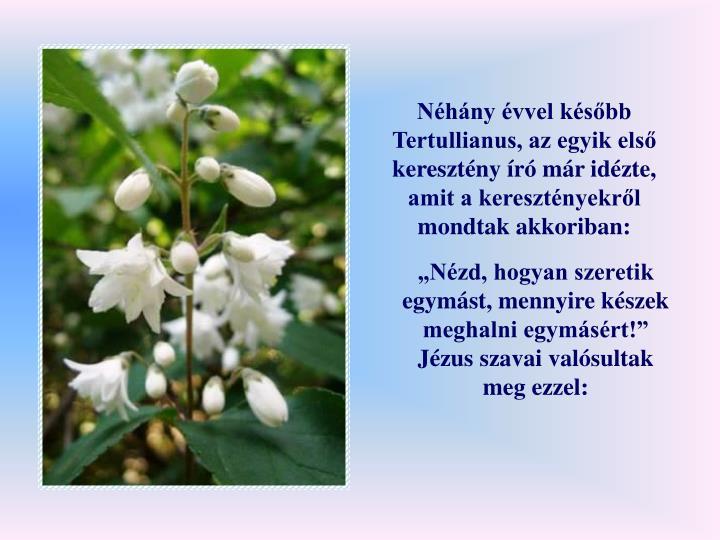 Nhny vvel ksbb Tertullianus, az egyik els keresztny r mr idzte, amit a keresztnyekrl mondtak akkoriban: