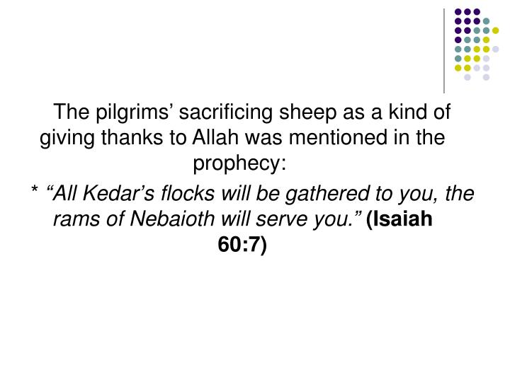The pilgrims' sacrificing sheep as a kind of giving thanks to Allah was mentioned in the prophecy:
