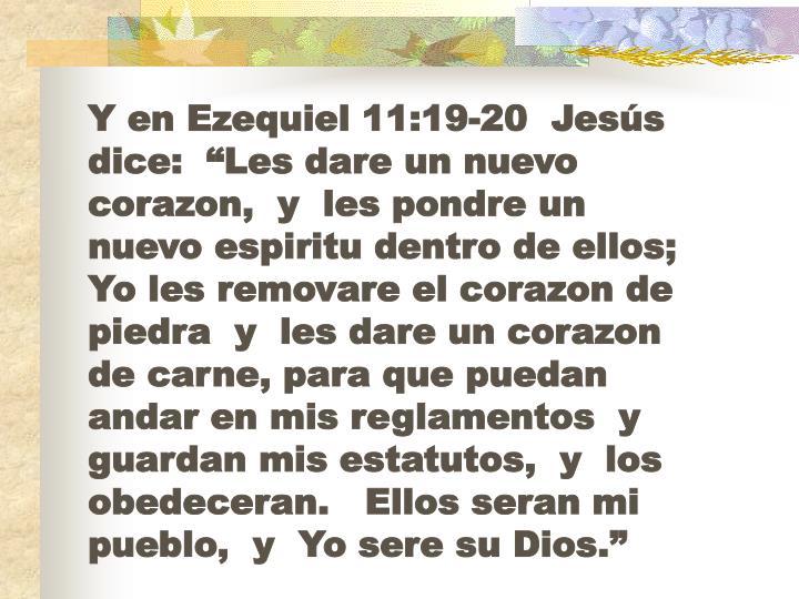 """Y en Ezequiel 11:19-20  Jesús dice:  """"Les dare un nuevo corazon,  y  les pondre un nuevo espiritu dentro de ellos;   Yo les removare el corazon de piedra  y  les dare un corazon de carne, para que puedan andar en mis reglamentos  y guardan mis estatutos,  y  los obedeceran.   Ellos seran mi pueblo,  y  Yo sere su Dios."""""""