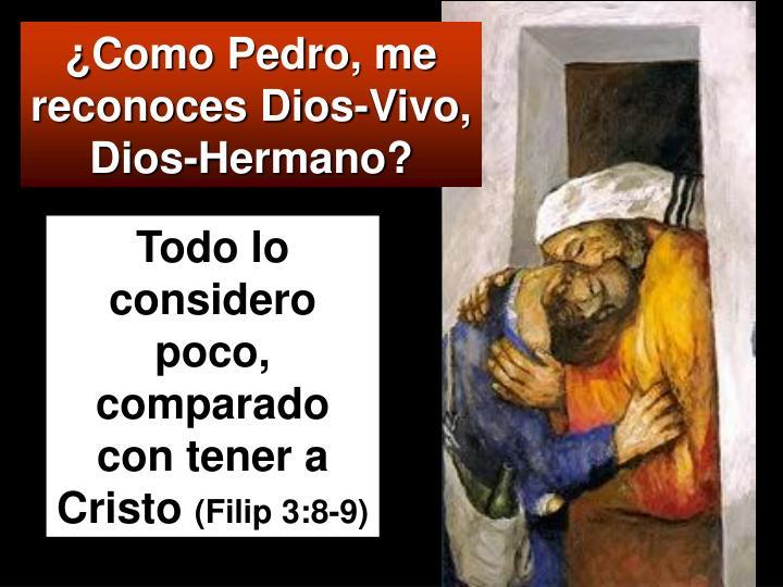 ¿Como Pedro, me reconoces Dios-Vivo, Dios-Hermano