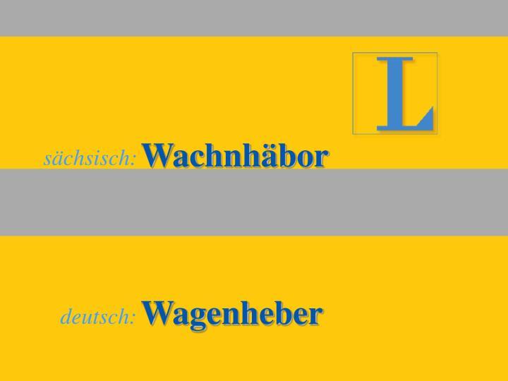 Wachnhäbor