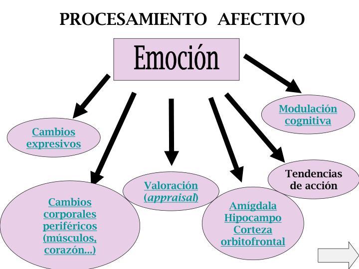 Emoción