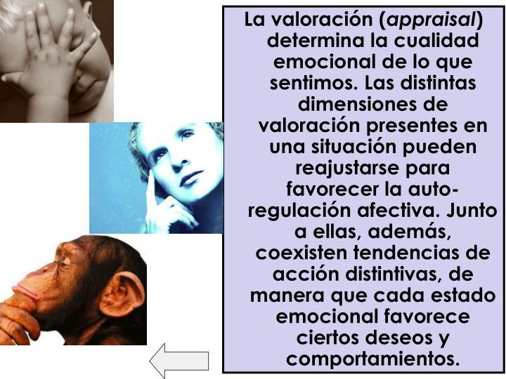 La valoración (
