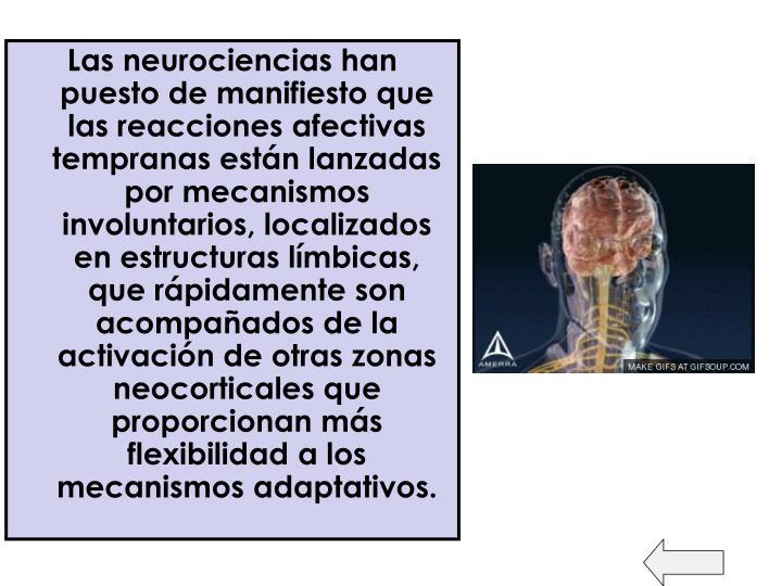 Las neurociencias han puesto de manifiesto que las reacciones afectivas tempranas están lanzadas por mecanismos involuntarios, localizados en estructuras límbicas, que rápidamente son acompañados de la activación de otras zonas