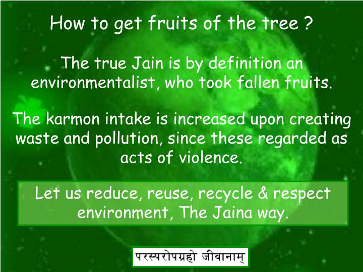 How to get fruits of the tree ?