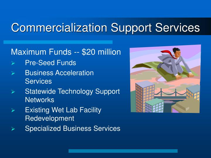 Commercialization Support Services