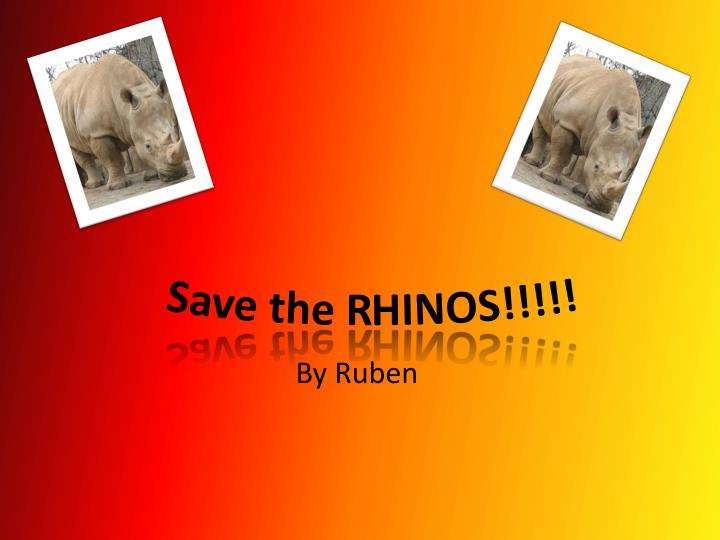 argumentative essay on rhino poaching Check out our top free essays on disadvantages of poaching to help you write your poaching – of rhino in kaziranga and manas national argumentative essay.