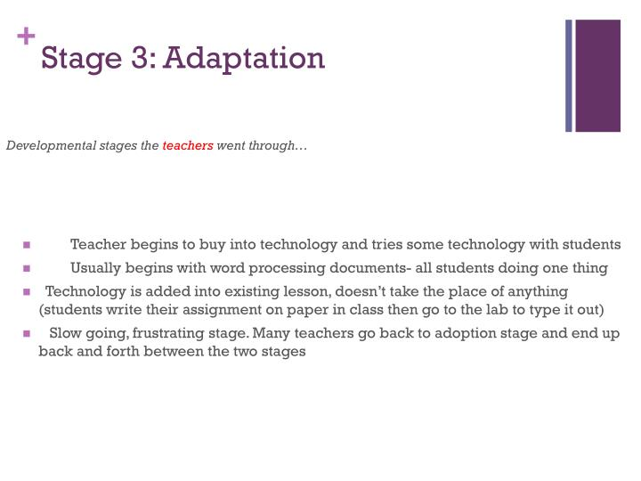 Stage 3: Adaptation