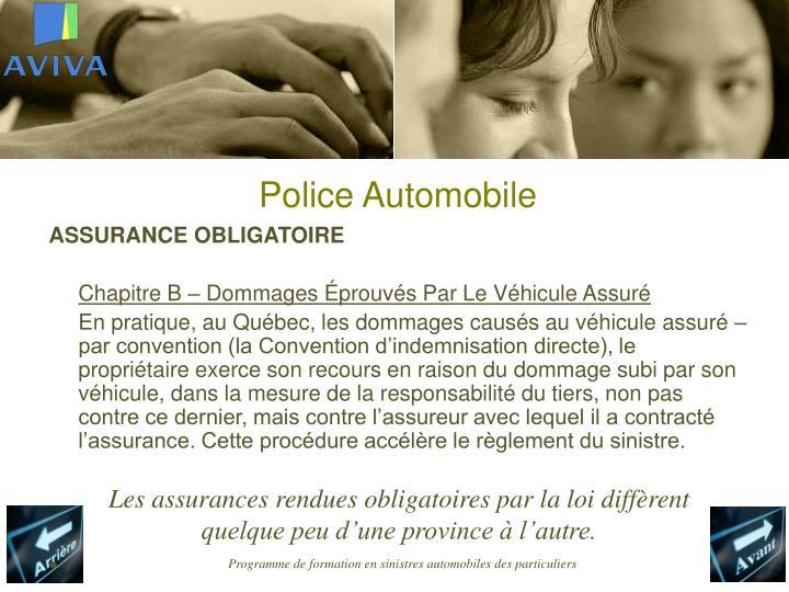 Police Automobile
