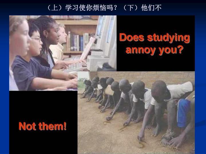 (上)学习使你烦恼吗?(下)他们不