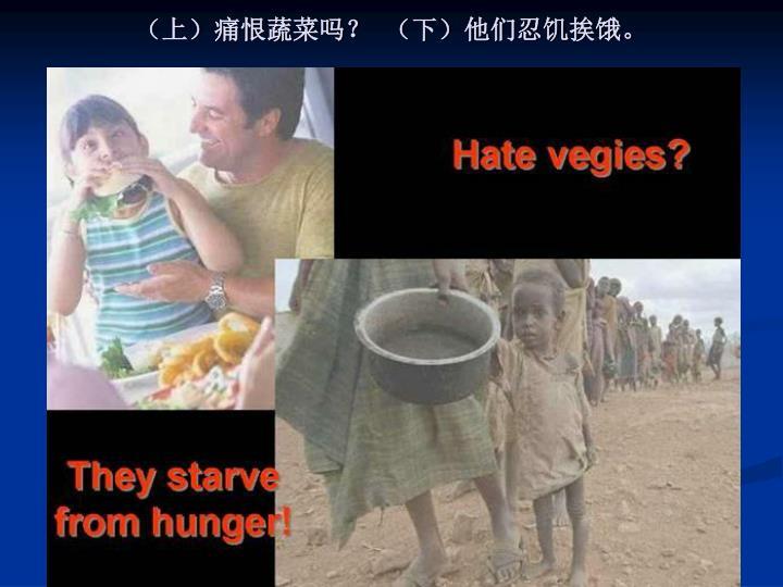 (上)痛恨蔬菜吗?