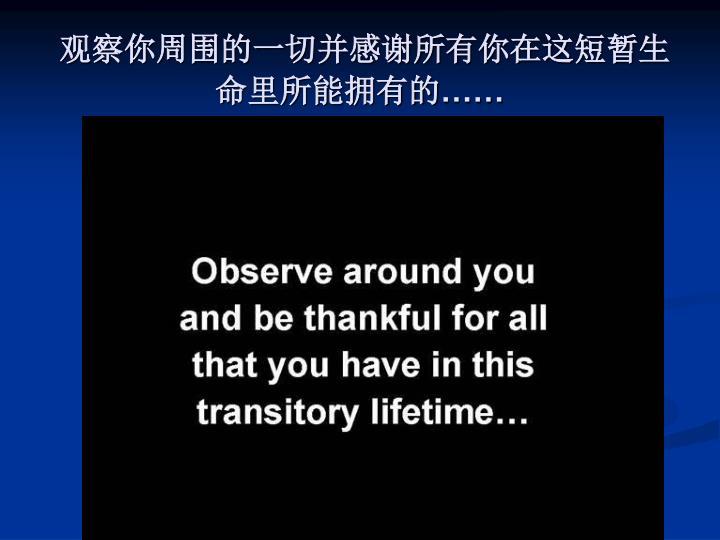 观察你周围的一切并感谢所有你在这短暂生命里所能拥有的