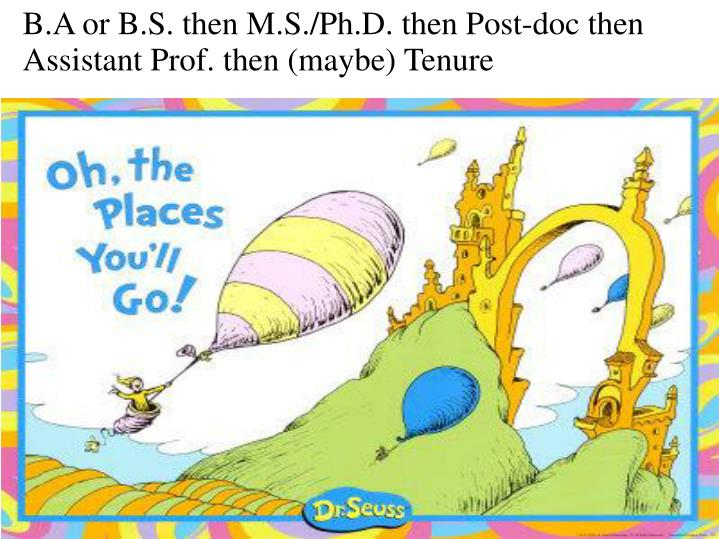 B.A or B.S. then M.S./Ph.D. then Post-doc then Assistant Prof. then (maybe) Tenure