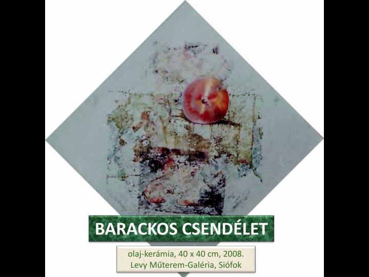 BARACKOS CSENDÉLET