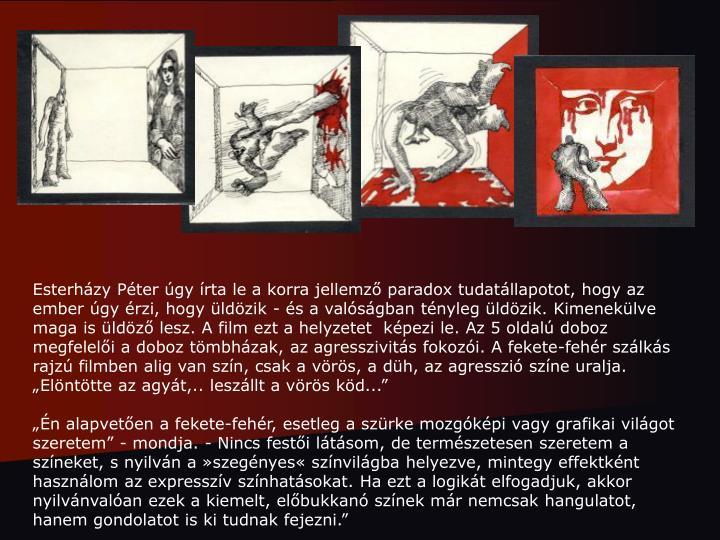 """Esterházy Péter úgy írta le a korra jellemző paradox tudatállapotot, hogy az ember úgy érzi, hogy üldözik - és a valóságban tényleg üldözik. Kimenekülve maga is üldöző lesz. A film ezt a helyzetet  képezi le. Az 5 oldalú doboz megfelelői a doboz tömbházak, az agresszivitás fokozói. A fekete-fehér szálkás rajzú filmben alig van szín, csak a vörös, a düh, az agresszió színe uralja. """"Elöntötte az agyát,.. leszállt a vörös köd..."""""""
