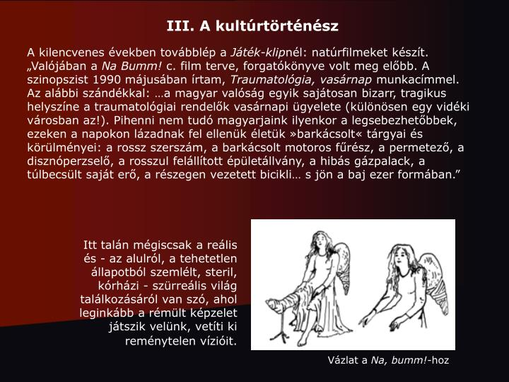 III. A kultúrtörténész