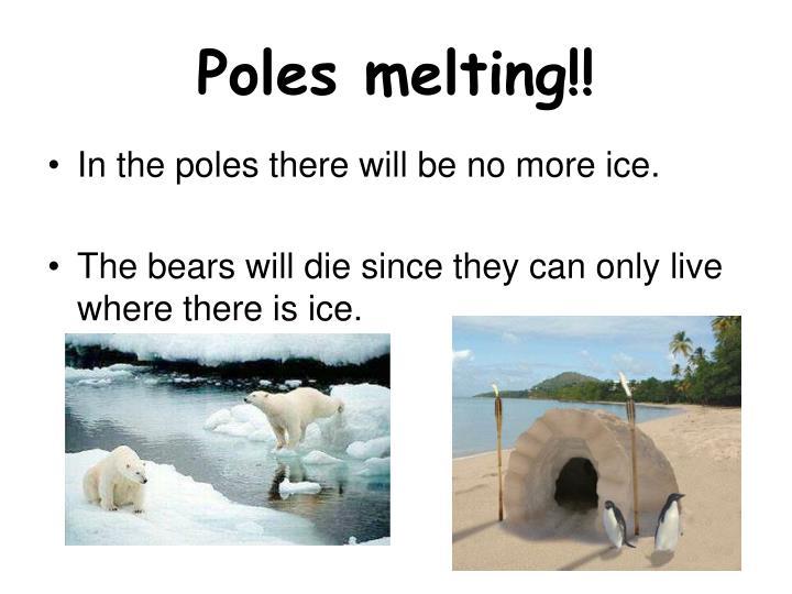 Poles melting!!