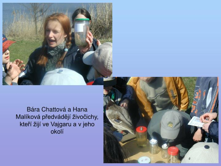 Bára Chattová a Hana Malíková předvádějí živočichy, kteří žijí ve Vajgaru a v jeho okolí