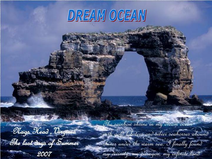 DREAM OCEAN