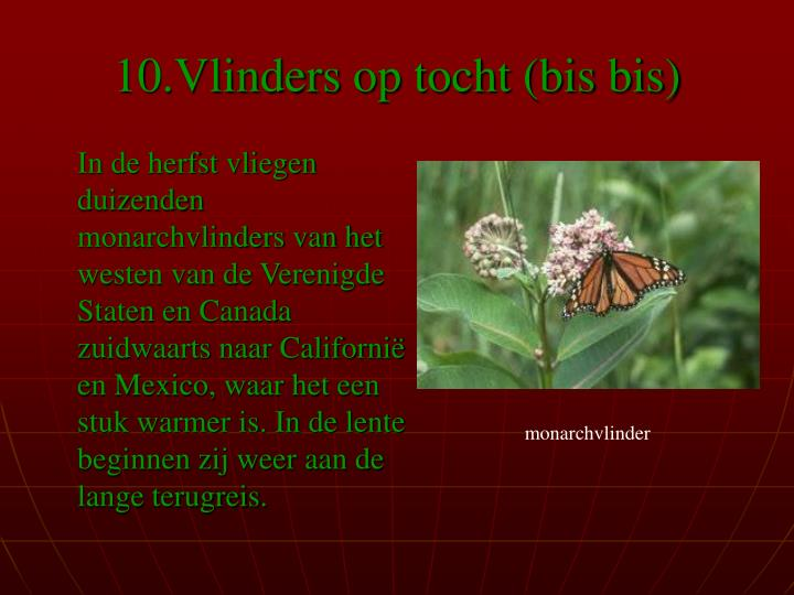 10.Vlinders op tocht (bis bis)