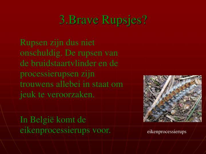 3.Brave Rupsjes?
