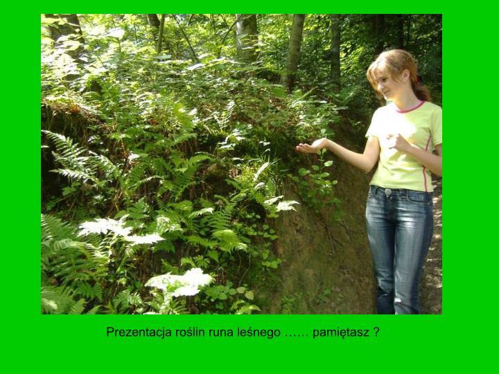 Prezentacja roślin runa leśnego …… pamiętasz ?