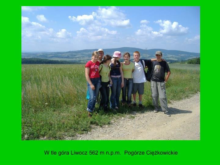 W tle góra Liwocz 562 m n.p.m.  Pogórze Ciężkowickie