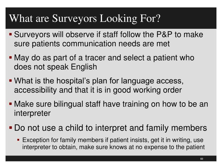 What are Surveyors Looking For?