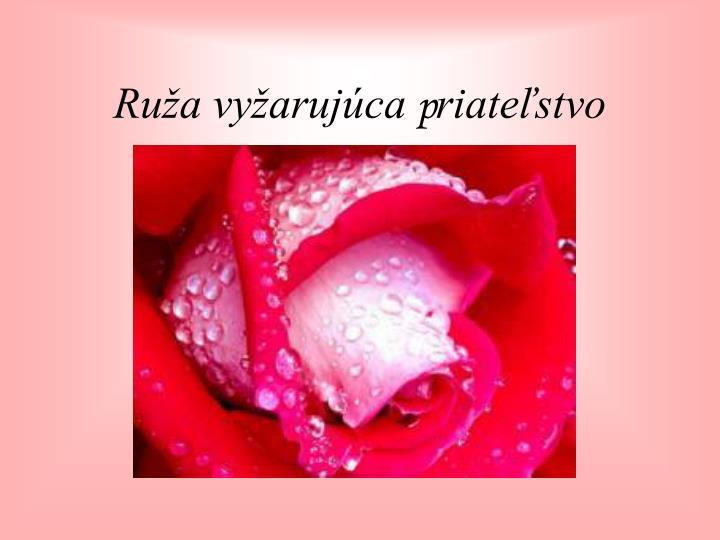 Ruža vyžarujúca