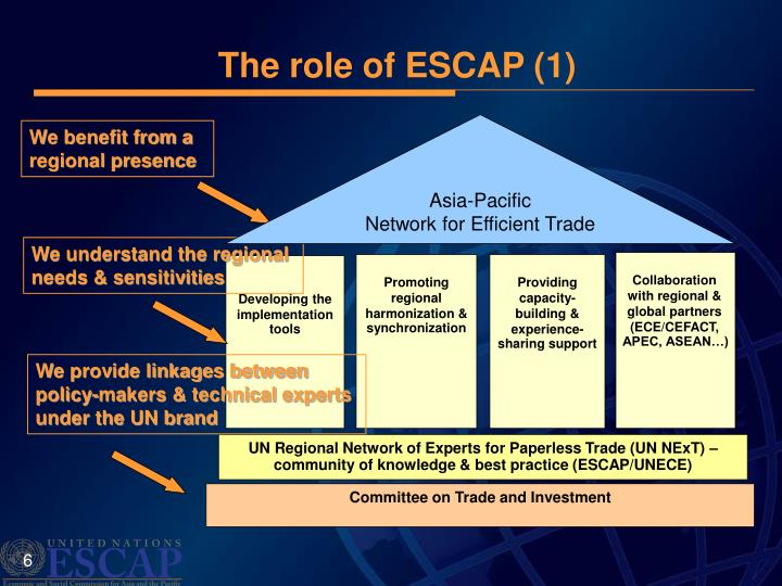 The role of ESCAP (1)