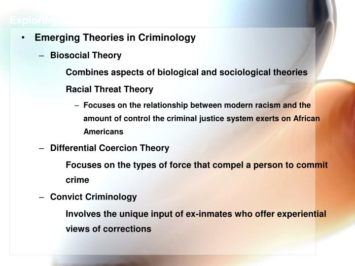 Exploring the Causes of Crime