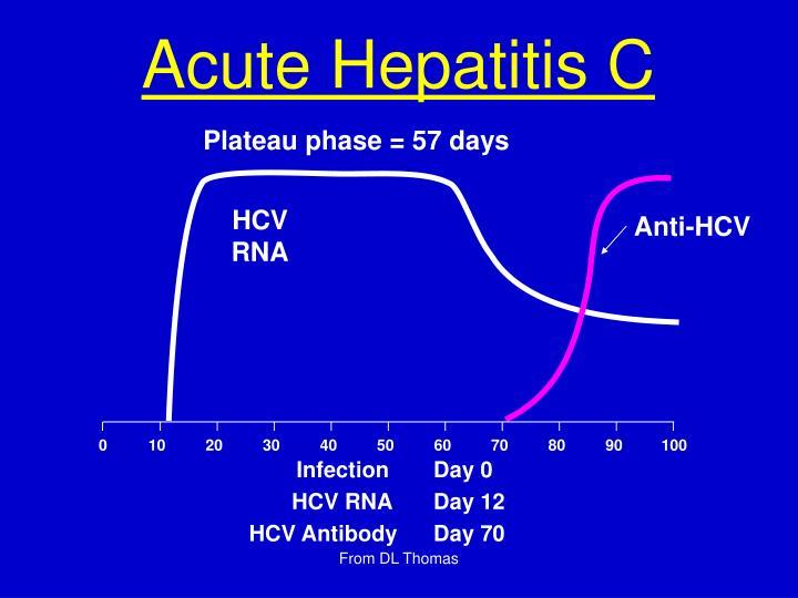 Acute Hepatitis C