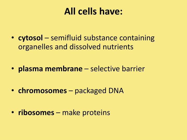 All cells have: