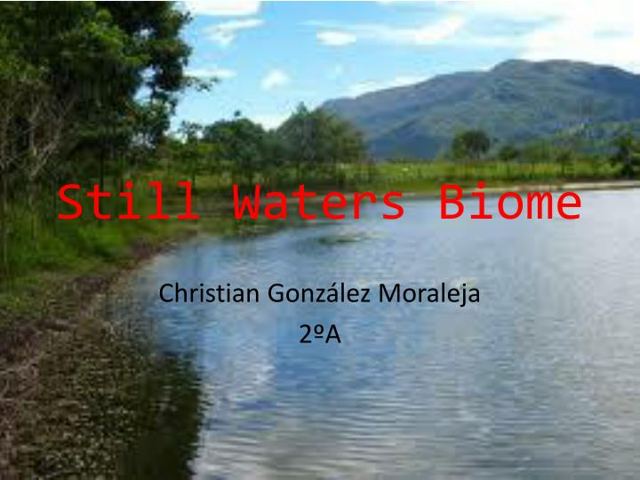 Still waters biome