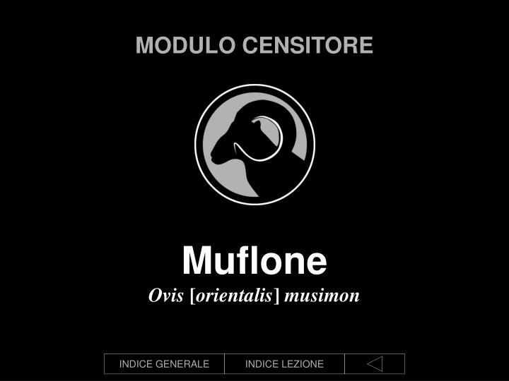 Modulo censitore