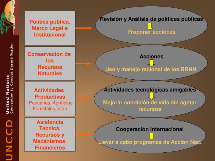 Revisión y Análisis de políticas públicas