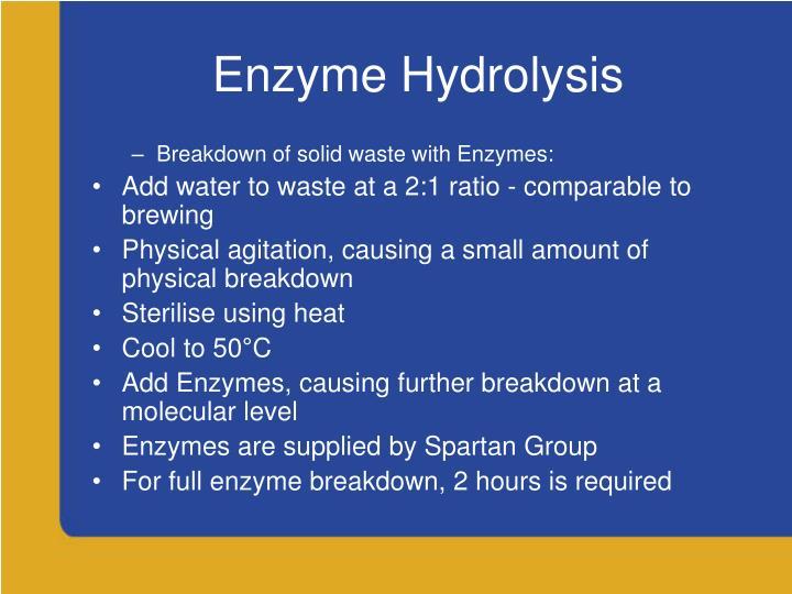 Enzyme Hydrolysis