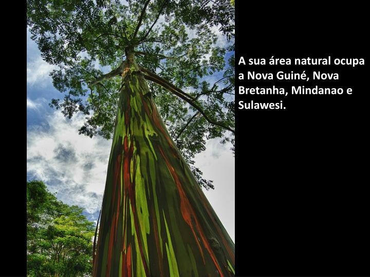 A sua área natural ocupa a Nova Guiné, Nova Bretanha, Mindanao e Sulawesi.