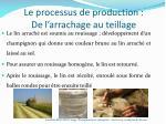 le processus de production de l arrachage au teillage